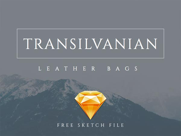 Transilvanian - Website Template