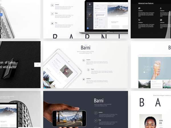 Barni - Startup UI Kit