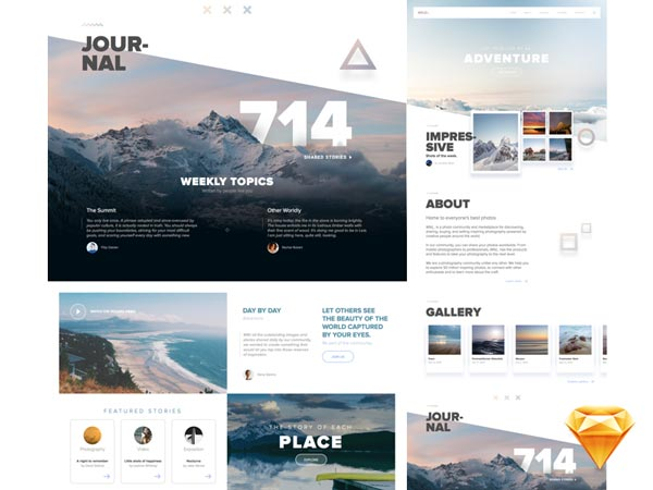 Wild - Sketch Website Template