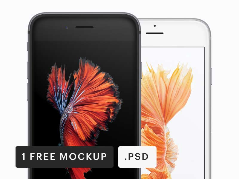 Frontal iPhone Mockup - Free PSD