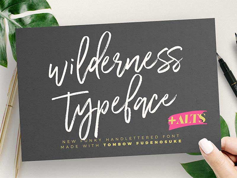 Wilderness Typeface - Free Font